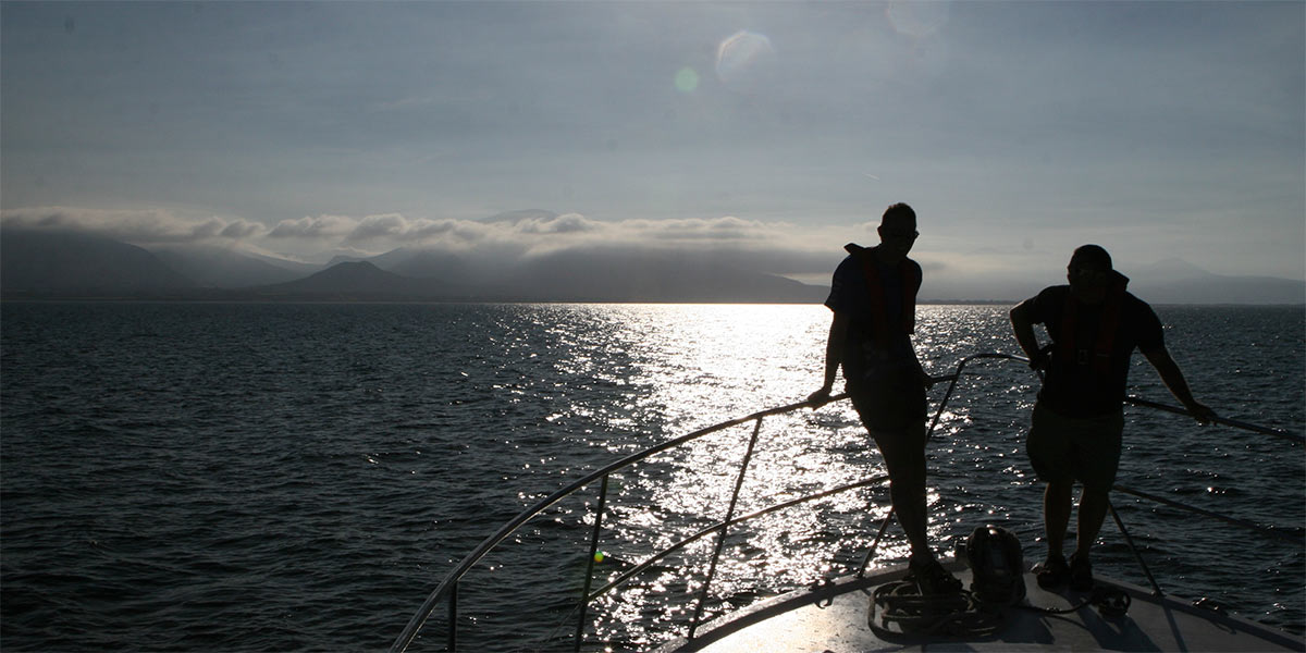 Fenit Sea Angling