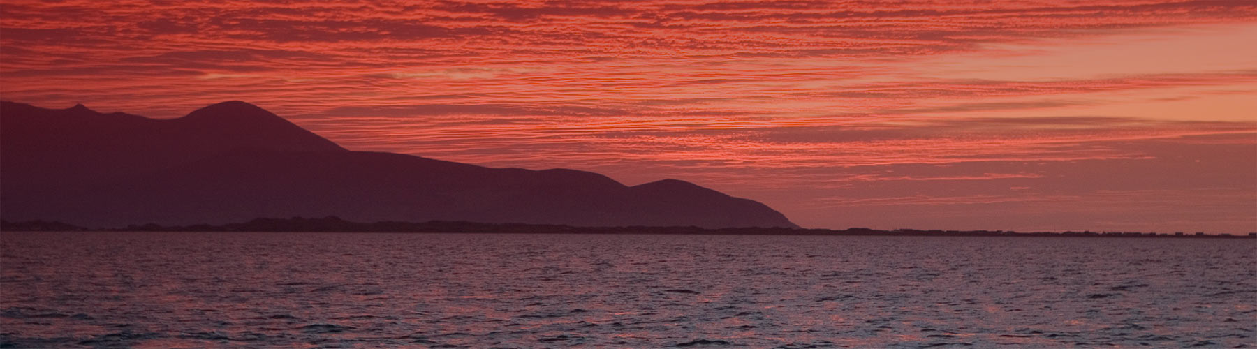 West-End-Bar-and-Restaurant-Fenit-Red